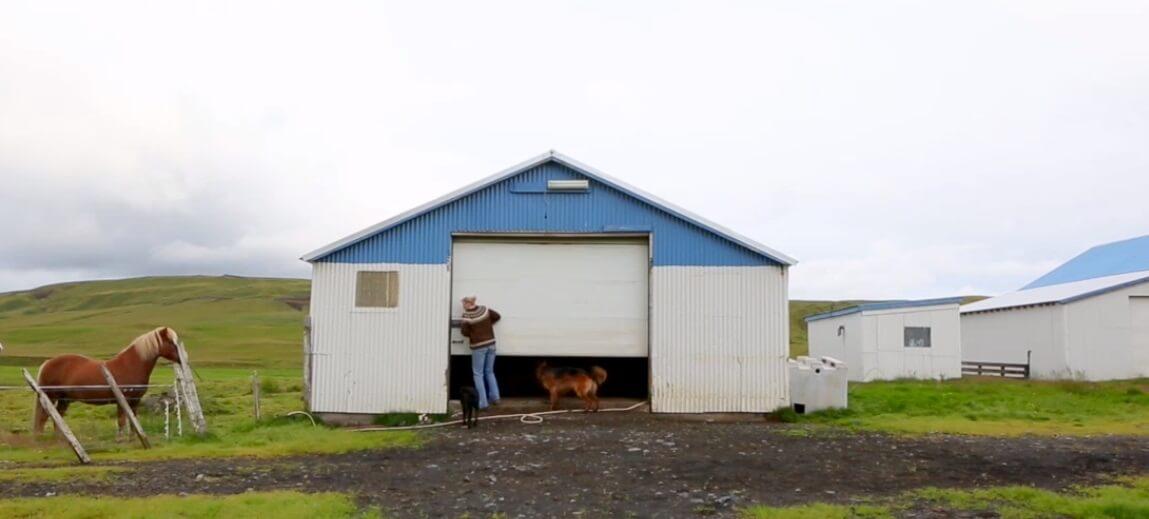 The Icelandic model who shears sheep