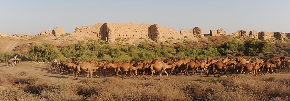 Iran Destination Reiseveranstalter