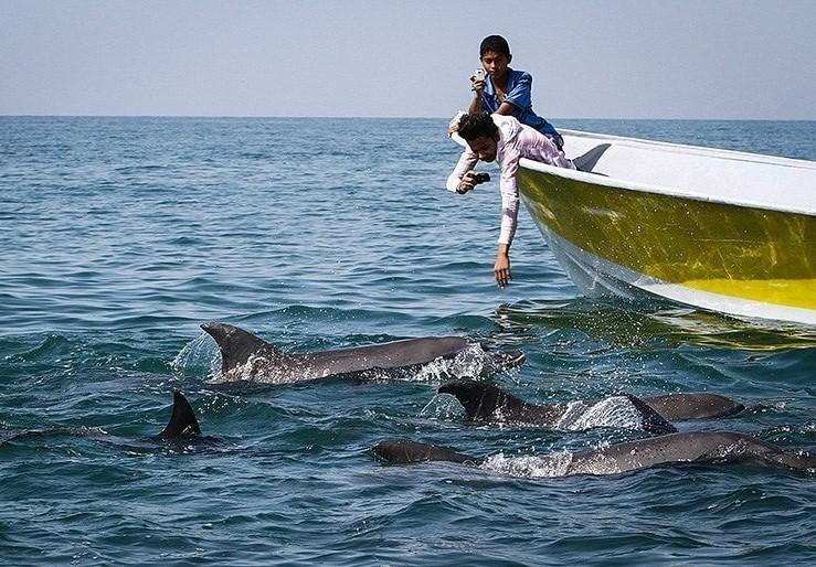 Qeshm Island , Iran Destination