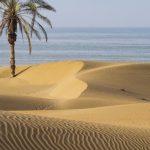 Best Time To Visit Iran Iran Destination The Best