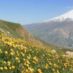 Damavand , Iran Hiking Tour