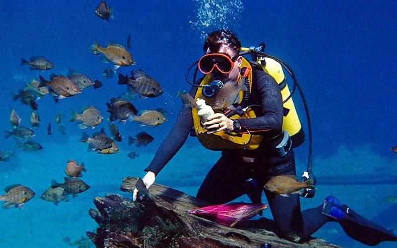Diving, Kish Water Sport