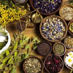 Iran Traditional Herbal Medicine History