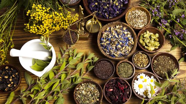 Iran Traditional Herbal Medicine History