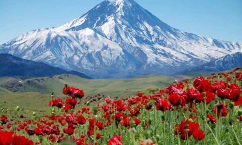 Iran Klettertour - Alborz Berg