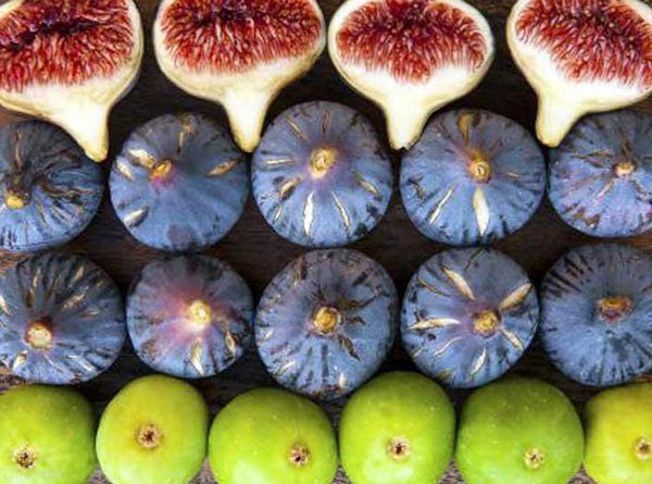Iran Fig , Iran Fruit , Iran Destination