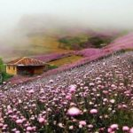 Talesh , North Iran , Iran Destination