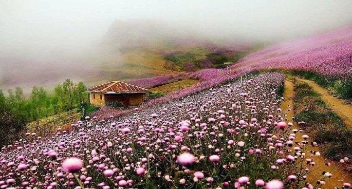 Talesh , North Iran , Iran Destination