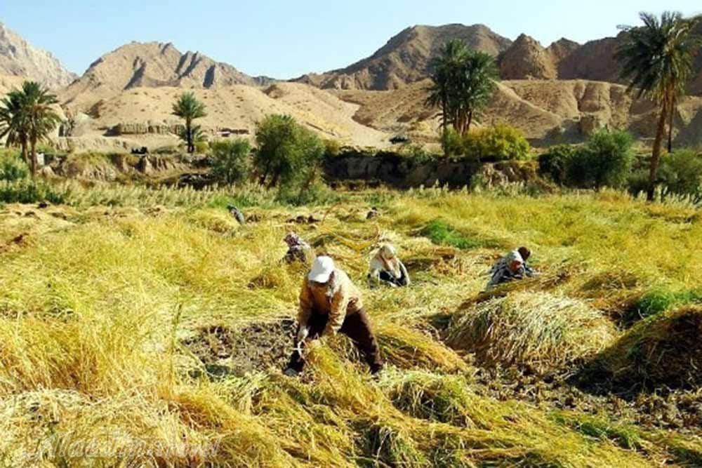 Izmaghan village , Iran Desert Village , Iran Destination