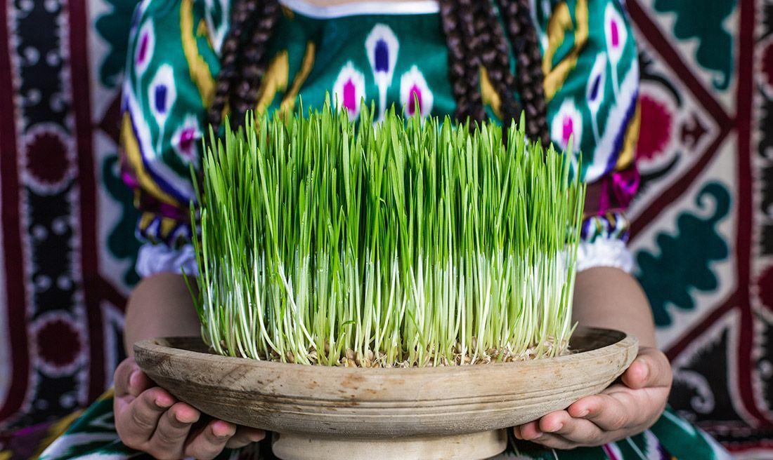 Nowruz Celebration , Nowruz Tradition , Iran Destination