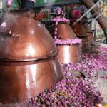 Iran Rosewater , Iran Destination Travel Agency