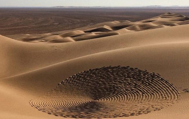 Rig Jen Desert