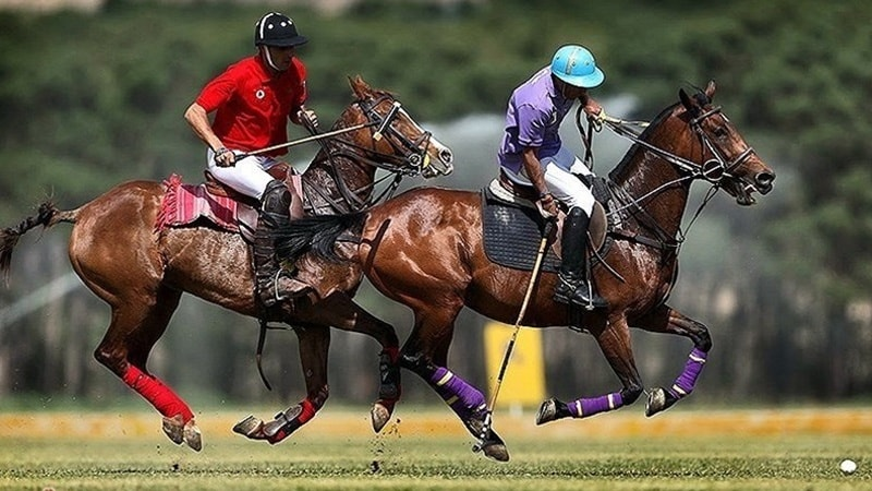 Chogan or Polo in Iran