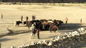 Pakistan village