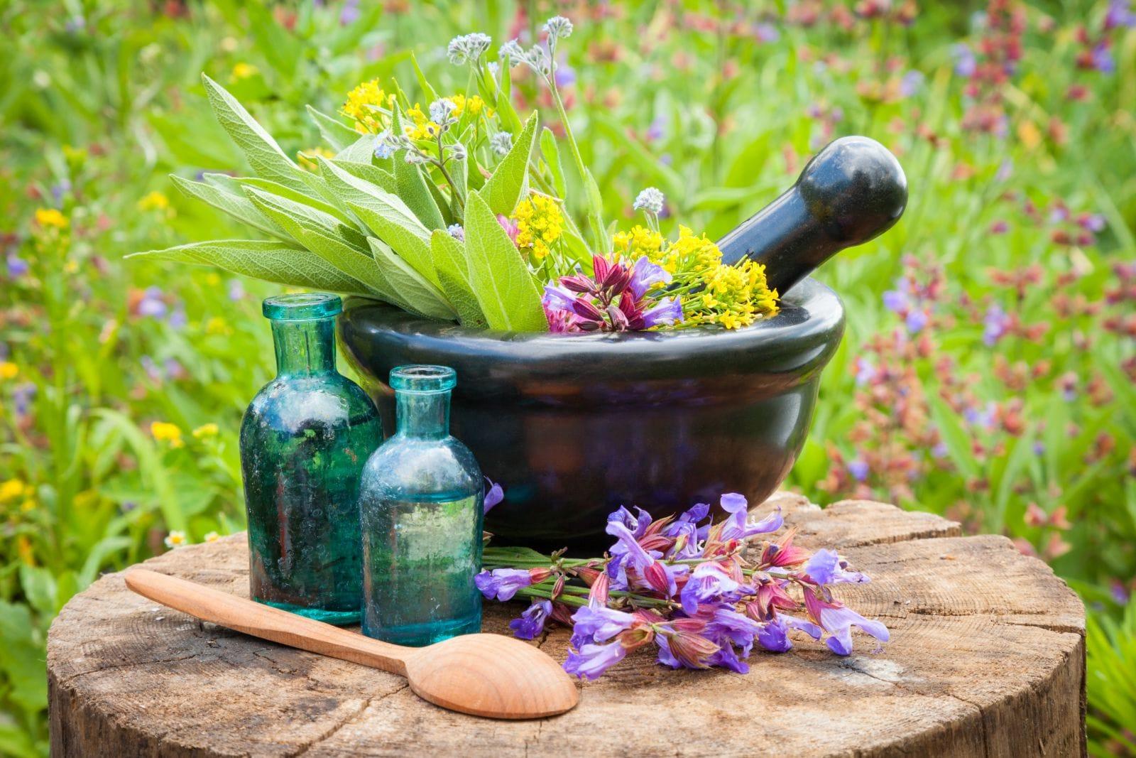 Persian herbal medicine