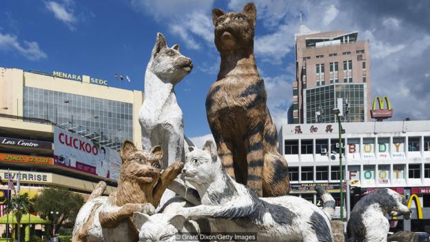 The Asian City obsessed with cats