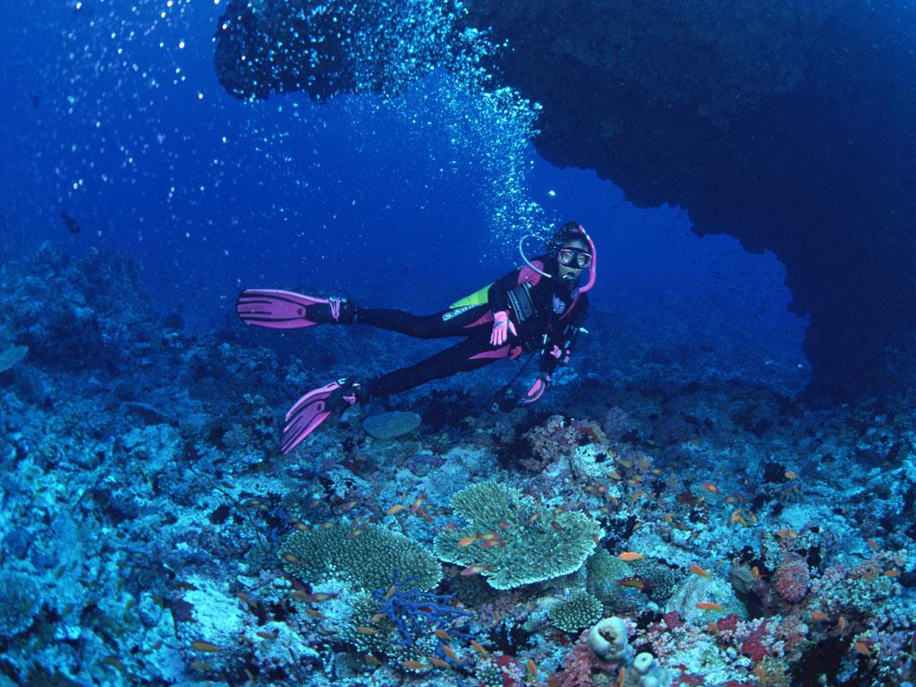 diving in Kish during winter in Iran