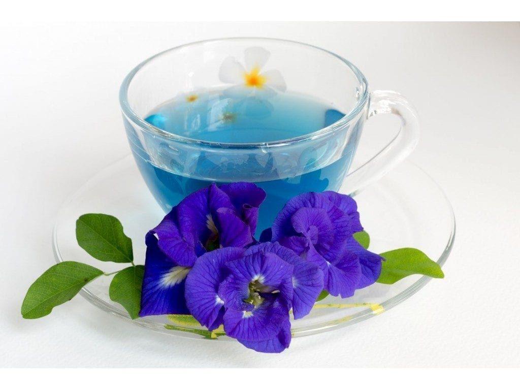 Gol Gav Zaban - Persian herbal medicine